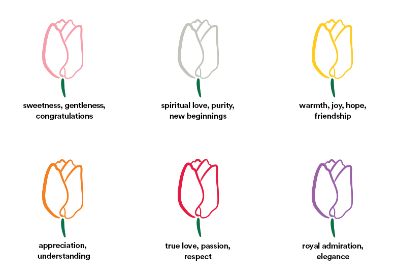 illustrative tulips color guide, meanings listed below