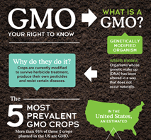 PDF on how to avoid GMOs