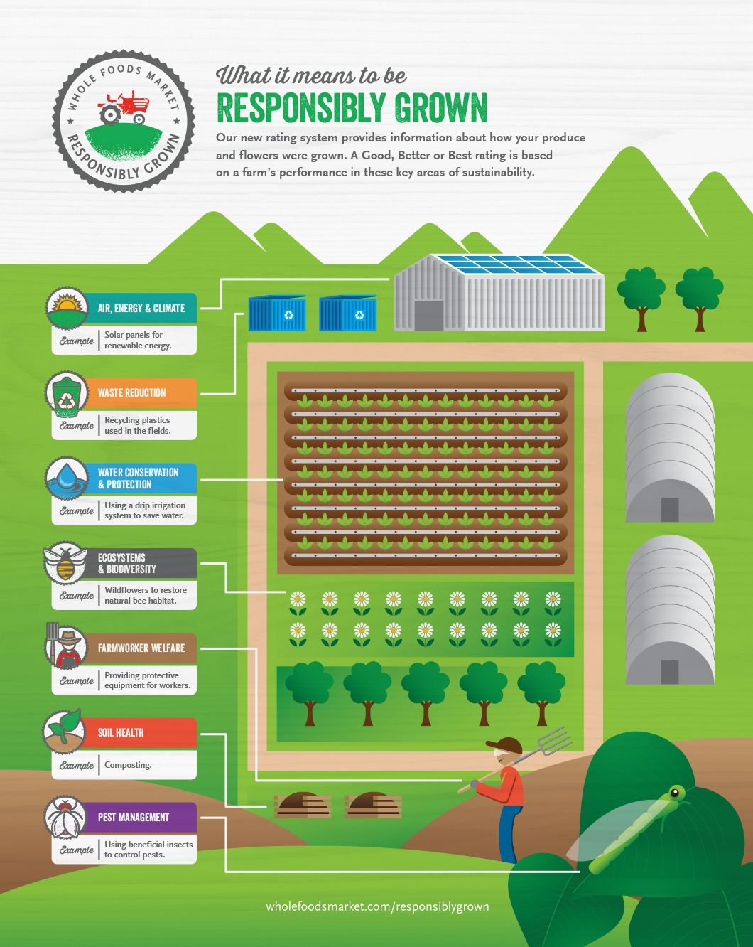 Learn on the farm whole foods market - What does it mean to be a master gardener ...